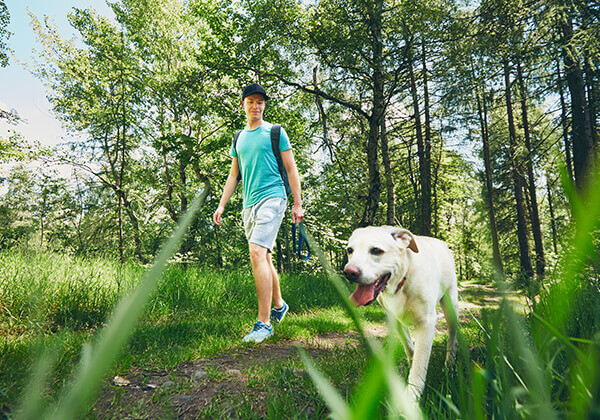 Man walking dog on wooded trail